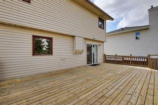 Photo 33: 30 MACEWAN RIDGE Place in Calgary: MacEwan Glen Detached for sale : MLS®# A1092445