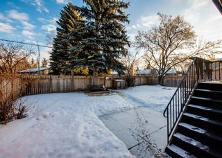 Photo 45: 2307 Lake Bonavista Drive SE in Calgary: Lake Bonavista Detached for sale : MLS®# A1065139