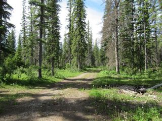 Photo 2: 70041 Highway 591: Rural Clearwater County Detached for sale : MLS®# C4305359