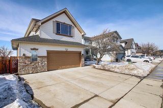 Photo 3: 260 SPRINGMERE Way: Chestermere Detached for sale : MLS®# A1073459