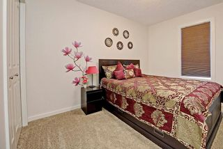 Photo 20: 289 MARQUIS Heights SE in Calgary: Mahogany House for sale : MLS®# C4130639