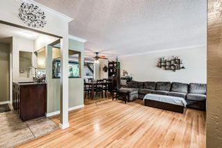 Photo 16: 82 Thornlee Crescent NW in Calgary: Thorncliffe Detached for sale : MLS®# A1146440