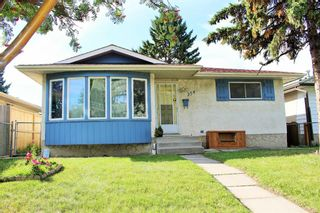 Photo 18: 254 Dovercliffe Way SE in Calgary: Dover Detached for sale : MLS®# A1146227