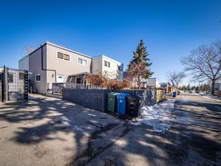 Photo 24: 3910 29A Avenue SE in Calgary: Dover Row/Townhouse for sale : MLS®# A1077291