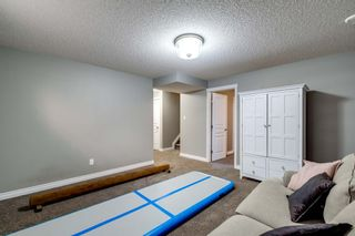 Photo 32: 16 CODETTE Way: Sherwood Park House for sale : MLS®# E4237097