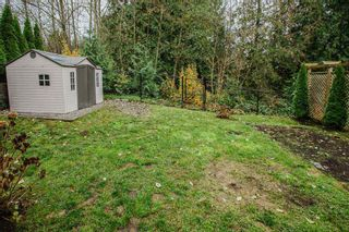 "Photo 39: 24630 101 Avenue in Maple Ridge: Albion House for sale in ""JACKSON RIDGE"" : MLS®# R2518222"