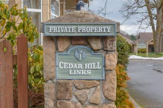 Photo 19: 14 3281 Maplewood Rd in VICTORIA: SE Cedar Hill Row/Townhouse for sale (Saanich East)  : MLS®# 806728