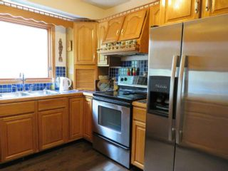Photo 12: 116 Paradise Trail in Anola: Oakbank Single Family Detached for sale (R04)  : MLS®# 1817919