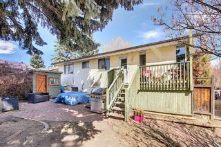 Photo 35: 687 Brookpark Drive SW in Calgary: Braeside Detached for sale : MLS®# A1093005