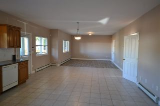Photo 15: 20123 PATTERSON Avenue in Maple Ridge: Southwest Maple Ridge House for sale : MLS®# R2414530