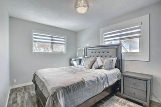 Photo 24: 1027 Penrith Crescent SE in Calgary: Penbrooke Meadows Detached for sale : MLS®# A1104837