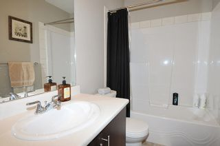 """Photo 8: 143 13819 232 Street in Maple Ridge: Silver Valley Townhouse for sale in """"BRIGHTON"""" : MLS®# R2038564"""