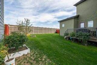 Photo 38: 204 Masters Crescent SE in Calgary: Mahogany Detached for sale : MLS®# A1143615