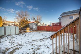 Photo 32: 15 Parkville Drive in Winnipeg: Residential for sale (2C)  : MLS®# 202028901