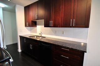 Photo 5: 303 4455A Greenview Drive NE in Calgary: Greenview Apartment for sale : MLS®# A1049950