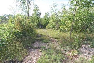 Photo 8: Lt 27 Ramblewood Trail in Kawartha Lakes: Rural Bexley Property for sale : MLS®# X4857401