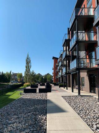 Photo 31: 243 308 AMBLESIDE Link in Edmonton: Zone 56 Condo for sale : MLS®# E4260650