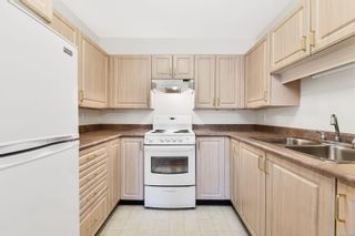Photo 4: 210 1485 Garnet Rd in : SE Cedar Hill Condo for sale (Saanich East)  : MLS®# 871220