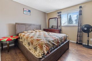 Photo 16: 6728 43 Avenue NE in Calgary: Temple Detached for sale : MLS®# A1092805