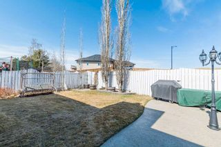 Photo 4: 9348 180A Avenue NW in Edmonton: Zone 28 House for sale : MLS®# E4240448