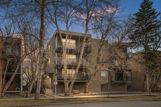 Main Photo: 204 709 3 Avenue NW in Calgary: Sunnyside Apartment for sale : MLS®# A1098399