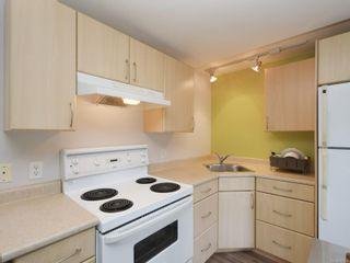 Photo 25: 3204 Frechette St in : SE Mt Tolmie House for sale (Saanich East)  : MLS®# 867293