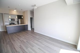 Photo 8: PH05 70 Philip Lee Drive in Winnipeg: Crocus Meadows Condominium for sale (3K)  : MLS®# 202008698