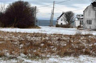 Photo 3: 295 TROUT COVE Road in Centreville: 401-Digby County Residential for sale (Annapolis Valley)  : MLS®# 202024867