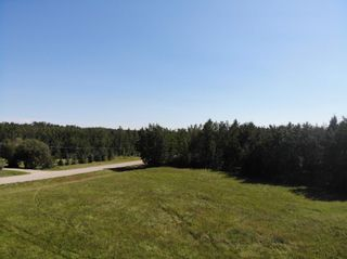 Photo 10: 50 Ave RR 281: Rural Wetaskiwin County Rural Land/Vacant Lot for sale : MLS®# E4191216