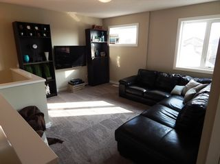 Photo 13: 27 Dragonfly Court in Winnipeg: Sage Creek House for sale ()  : MLS®# 1510273