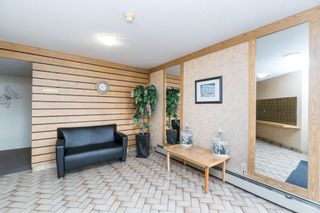 Photo 3: 135 31955 Old Yale Road in Abbotsford: Abbotsford West Condo for sale : MLS®# R2396453