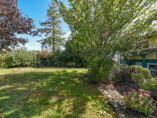 Photo 3: 2070 Cooke Ave in COMOX: CV Comox (Town of) House for sale (Comox Valley)  : MLS®# 825428