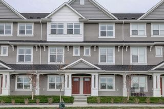 Photo 3: 83 Copperstone Road SE in Calgary: Copperfield Row/Townhouse for sale : MLS®# A1042334