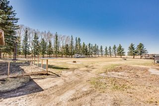 Photo 33: 79 Delrich Meadows: Delacour Detached for sale : MLS®# A1098729