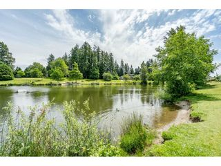 """Photo 40: 12007 S BOUNDARY Drive in Surrey: Panorama Ridge Townhouse for sale in """"Southlake Townhomes"""" : MLS®# R2465331"""