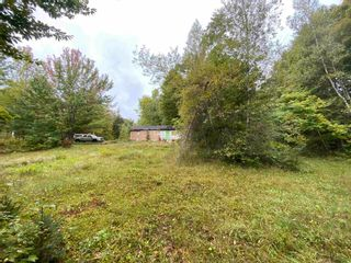 Photo 5: 1005 Heathbell Road in Scotch Hill: 108-Rural Pictou County Vacant Land for sale (Northern Region)  : MLS®# 202124669