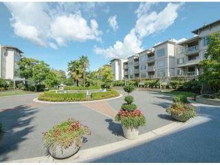 Photo 1: # 216 8220 JONES RD in Richmond: Brighouse South Condo for sale : MLS®# V1027228