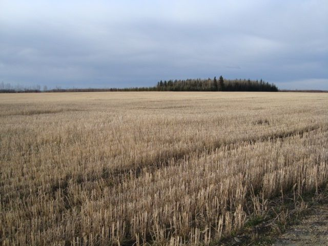 Main Photo: RR 25 HWY 661: Rural Westlock County Rural Land/Vacant Lot for sale : MLS®# E4236665