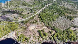 Photo 5: acreage 930 Road in Buckfield: Vacant Land for sale : MLS®# 202108244