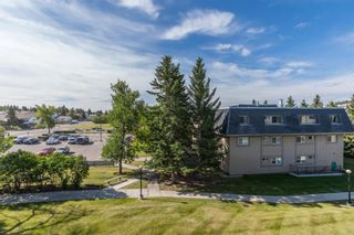 Photo 16: 2308 3115 51 Street SW in Calgary: Glenbrook Apartment for sale : MLS®# A1024636