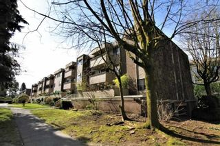 """Photo 19: 23 2444 WILSON Avenue in Port Coquitlam: Central Pt Coquitlam Condo for sale in """"ORCHARD"""" : MLS®# R2247251"""