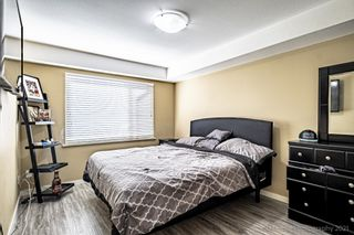"""Photo 4: 211 2373 ATKINS Avenue in Port Coquitlam: Central Pt Coquitlam Condo for sale in """"CARMANDY"""" : MLS®# R2613628"""