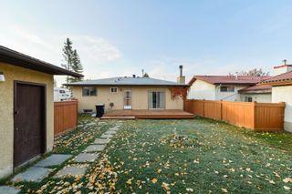 Photo 42: 10220 166 Avenue in Edmonton: Zone 27 House for sale : MLS®# E4265876