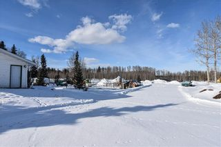 Photo 5: 53070 HIGHWAY 587: Rural Clearwater County Detached for sale : MLS®# C4285726