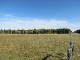 Photo 14: TWP Rd 310: Rural Mountain View County Land for sale : MLS®# C4292828