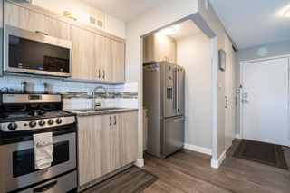 Photo 19: 521 10160 114 Street in Edmonton: Zone 12 Condo for sale : MLS®# E4265361