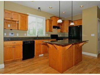 "Photo 10: 32888 EGGLESTONE Avenue in Mission: Mission BC House for sale in ""CEDAR VALLEY ESTATES"" : MLS®# F1416650"