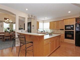 Photo 9: 16646 61 AV in Surrey: Cloverdale BC House for sale (Cloverdale)  : MLS®# F1446236