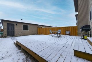 Photo 26: 246 Skyview Ranch Boulevard NE in Calgary: Skyview Ranch Semi Detached for sale : MLS®# A1052771