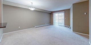 Photo 23: 204 2715 12 Avenue SE in Calgary: Albert Park/Radisson Heights Apartment for sale : MLS®# A1060528